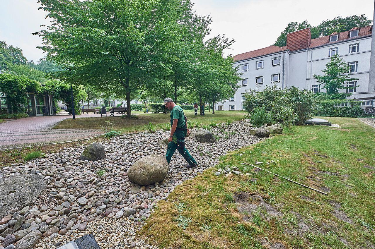 Steingarten-Pflege beim Klinikum Bremen-Mitte durch grewe