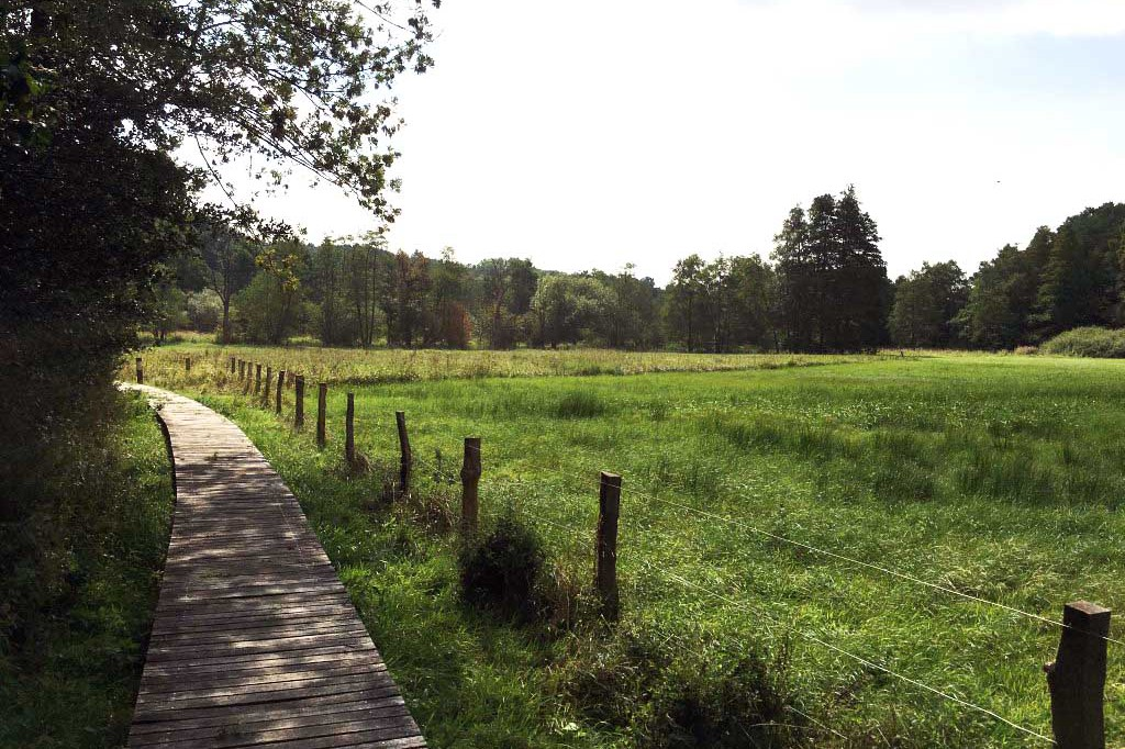 Die grewe-gruppe spendet an die Ökologiestation Bremen